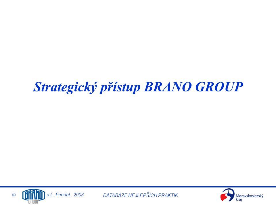 Strategický přístup BRANO GROUP