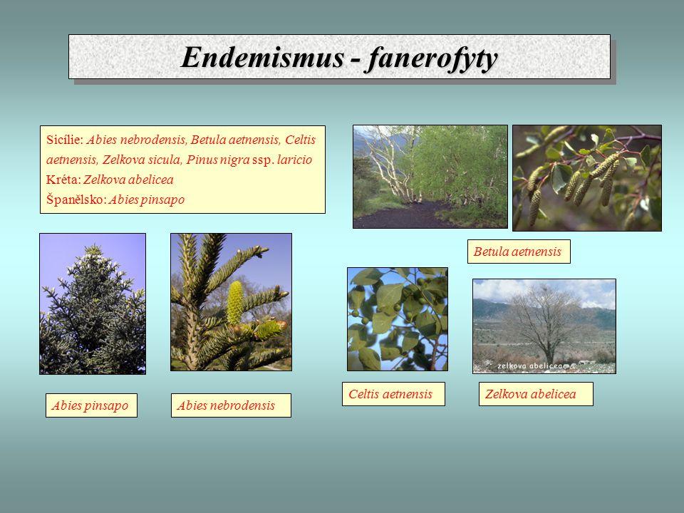 Endemismus - fanerofyty