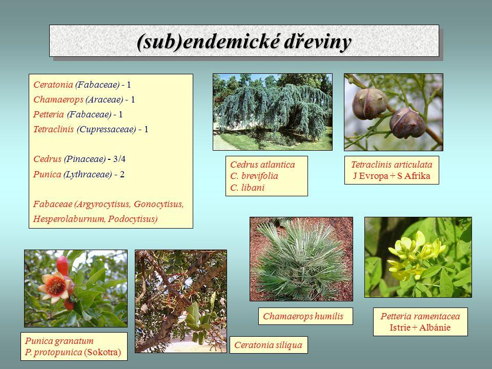 (sub)endemické dřeviny