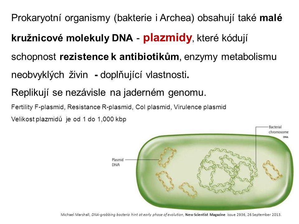 Replikují se nezávisle na jaderném genomu.