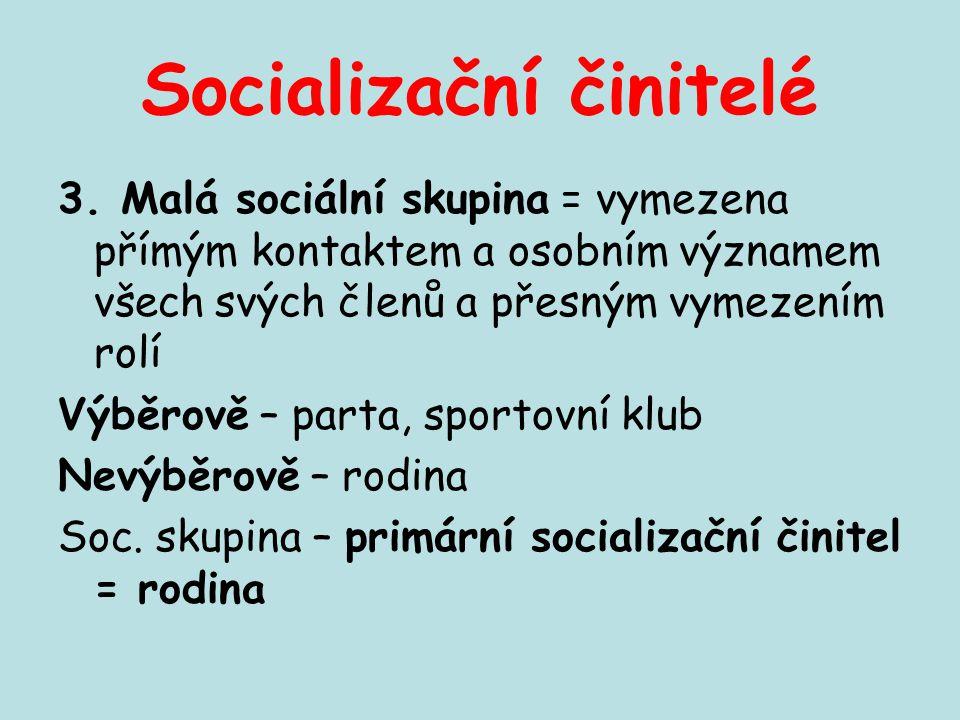 Socializační činitelé