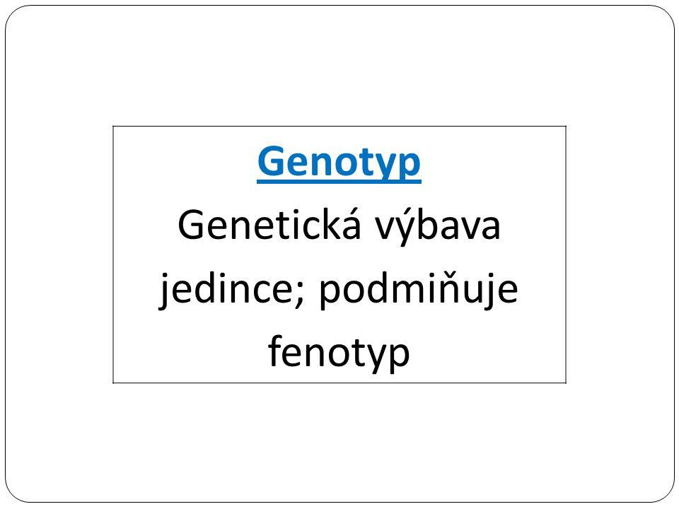Genetická výbava jedince; podmiňuje fenotyp