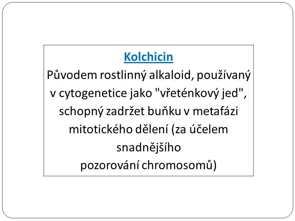 pozorování chromosomů)