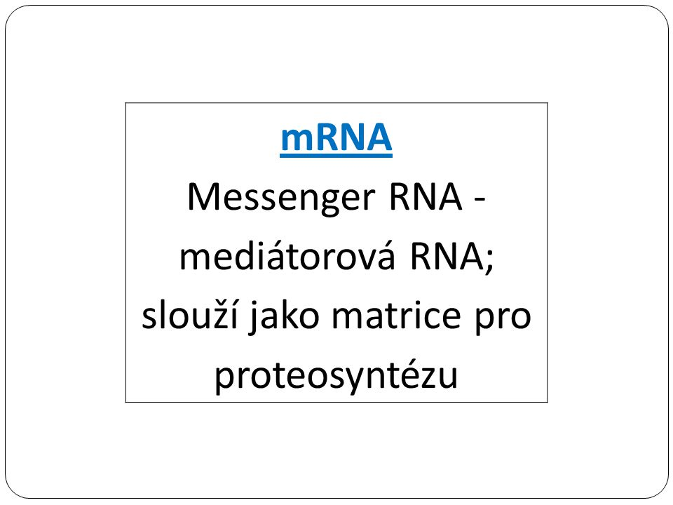 Messenger RNA - mediátorová RNA; slouží jako matrice pro proteosyntézu