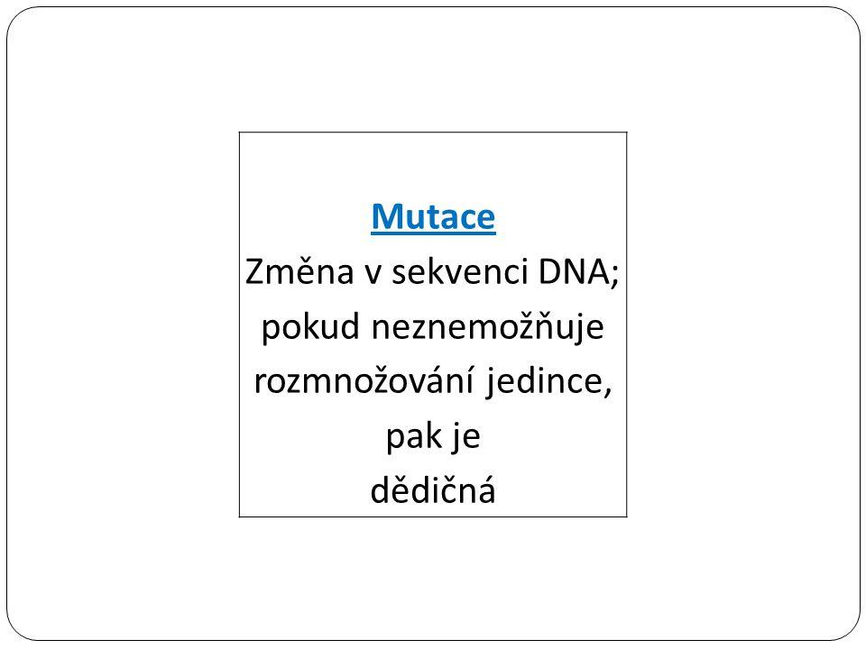 Změna v sekvenci DNA; pokud neznemožňuje rozmnožování jedince, pak je