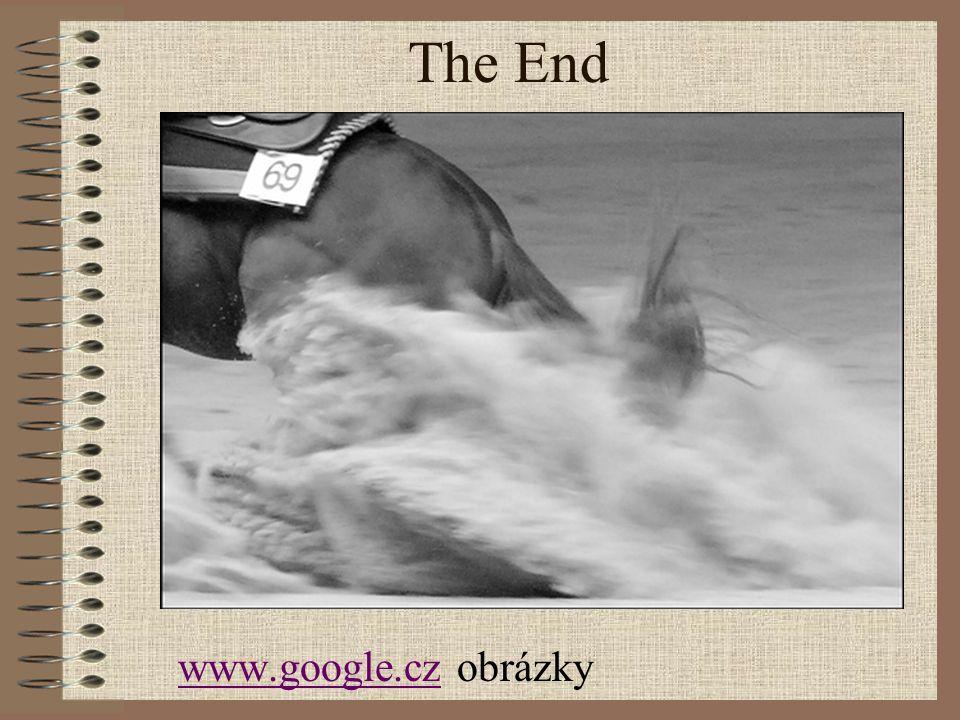 The End www.google.cz obrázky