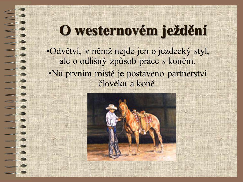Na prvním místě je postaveno partnerství člověka a koně.