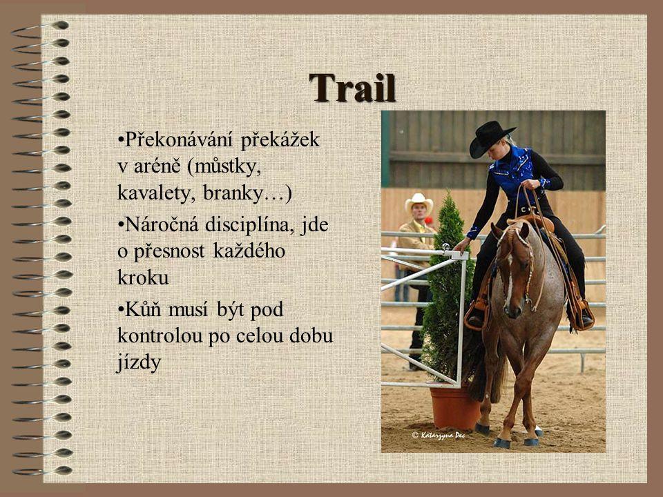 Trail Překonávání překážek v aréně (můstky, kavalety, branky…)