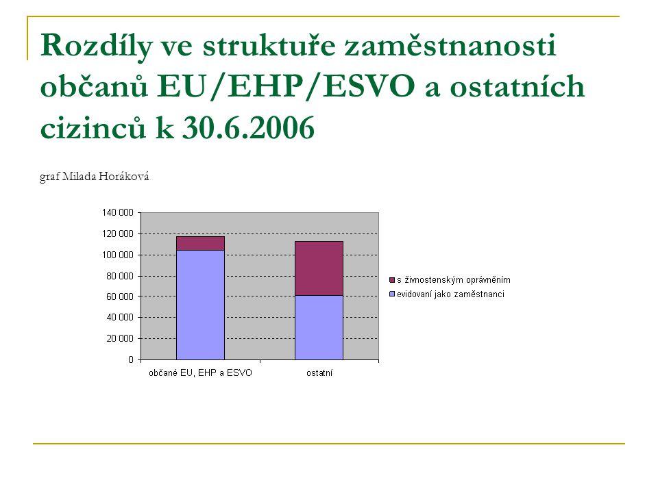 Rozdíly ve struktuře zaměstnanosti občanů EU/EHP/ESVO a ostatních cizinců k 30.6.2006 graf Milada Horáková