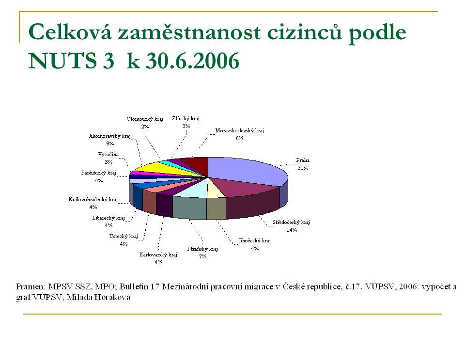 Celková zaměstnanost cizinců podle NUTS 3 k 30.6.2006