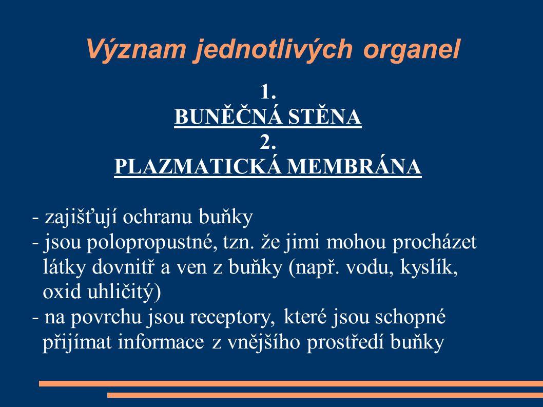 Význam jednotlivých organel
