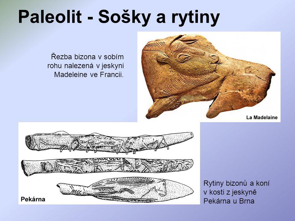 Paleolit - Sošky a rytiny