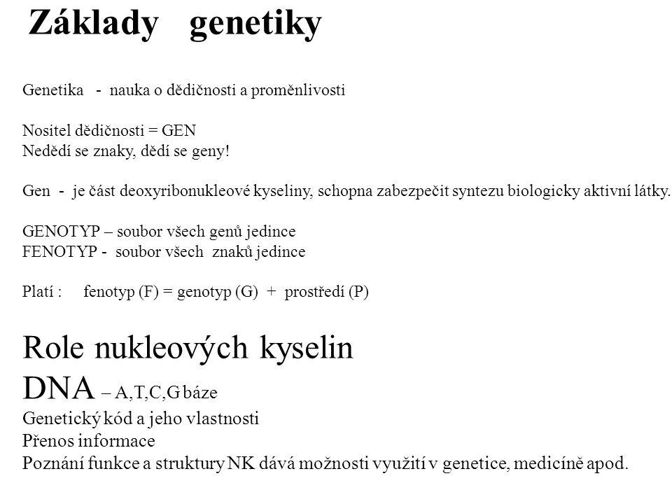 Základy genetiky Role nukleových kyselin DNA – A,T,C,G báze