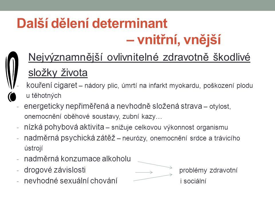 Další dělení determinant – vnitřní, vnější