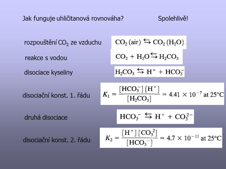Jak funguje uhličitanová rovnováha Spolehlivě!