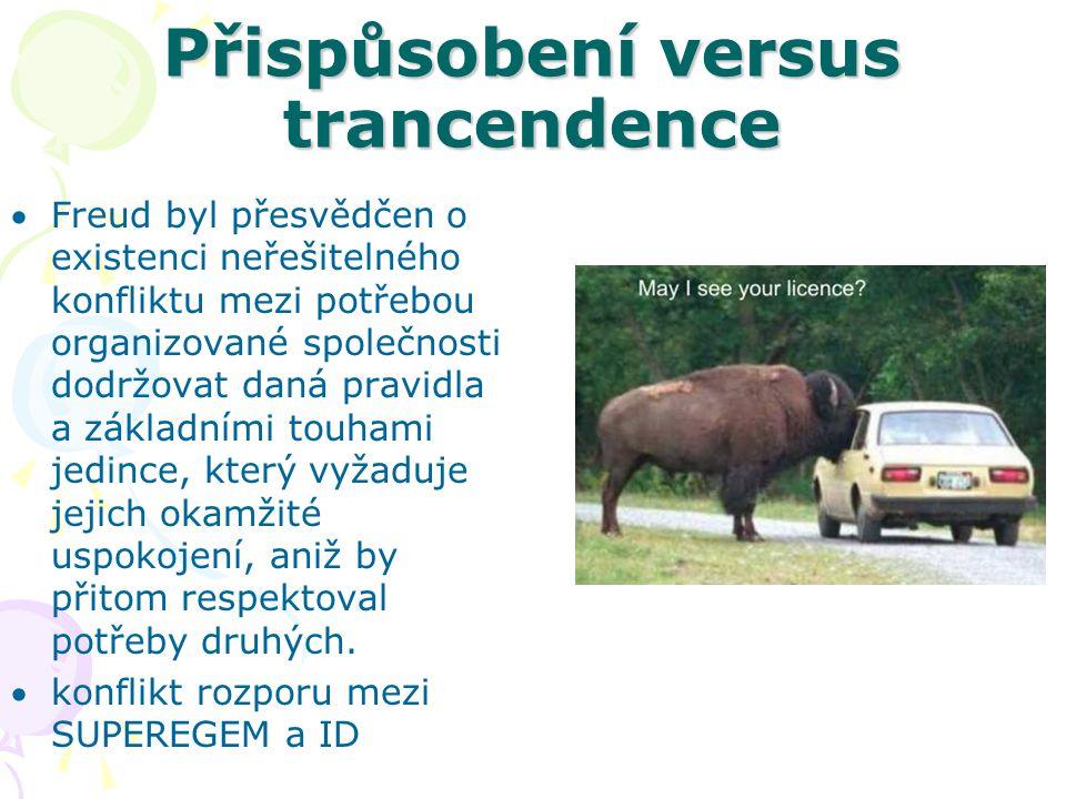 Přispůsobení versus trancendence