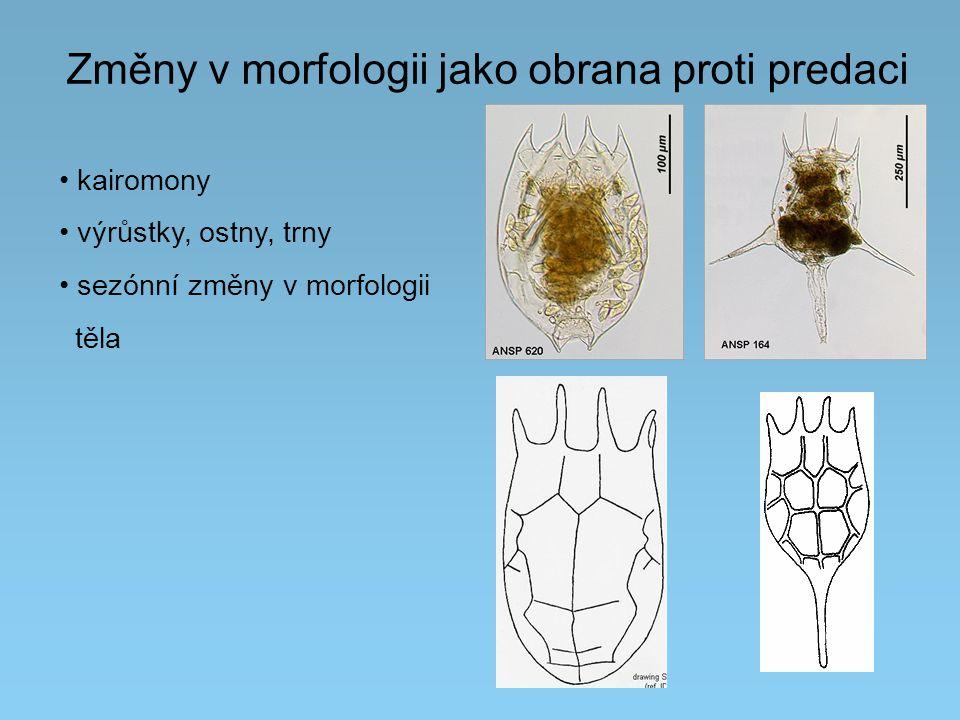 Změny v morfologii jako obrana proti predaci