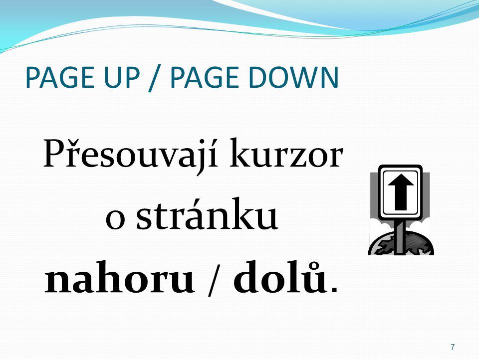 PAGE UP / PAGE DOWN Přesouvají kurzor o stránku nahoru / dolů.