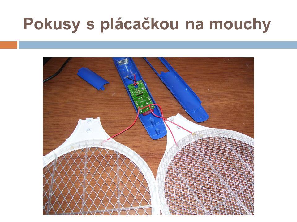 Pokusy s plácačkou na mouchy
