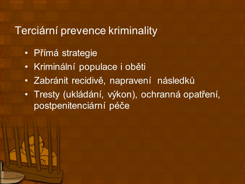Terciární prevence kriminality