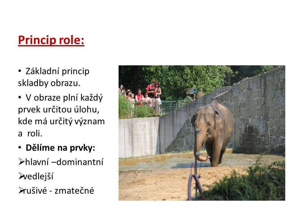 Princip role: Základní princip skladby obrazu.