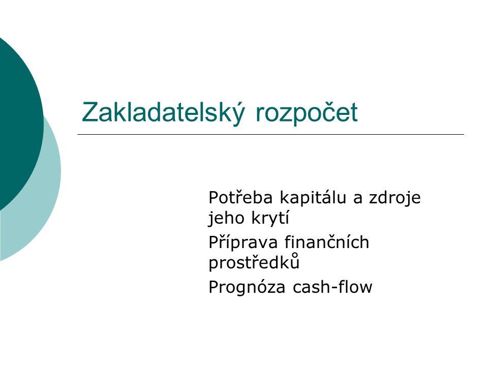 Zakladatelský rozpočet