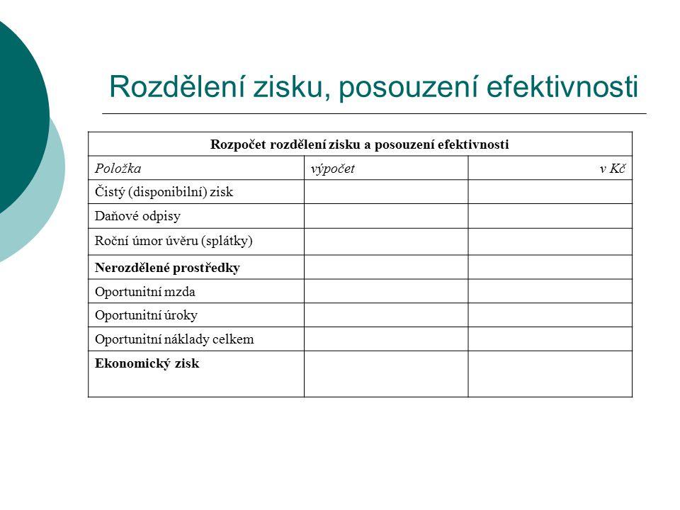 Rozdělení zisku, posouzení efektivnosti
