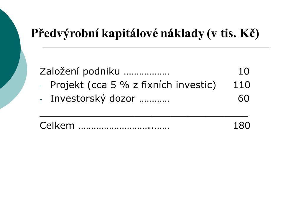 Předvýrobní kapitálové náklady (v tis. Kč)