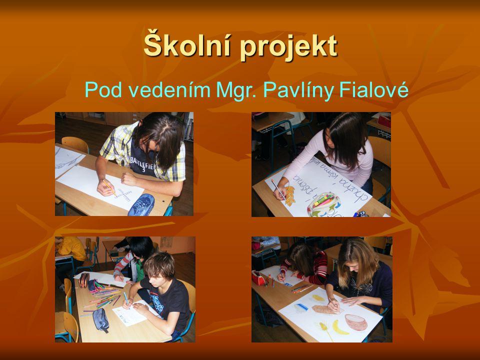 Školní projekt Pod vedením Mgr. Pavlíny Fialové