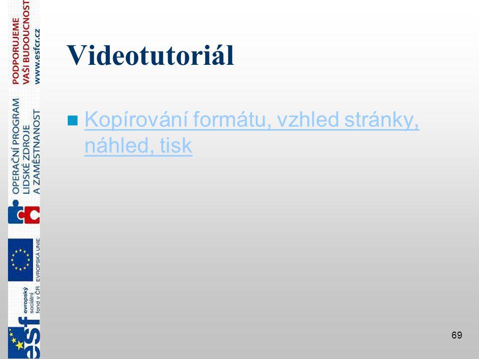 Videotutoriál Kopírování formátu, vzhled stránky, náhled, tisk