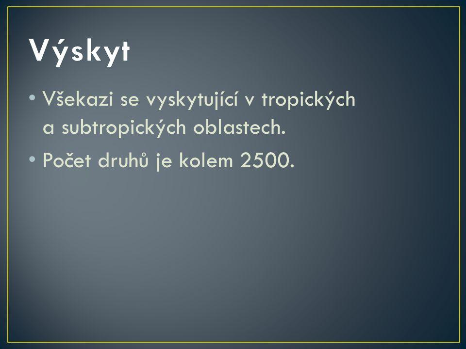 Výskyt Všekazi se vyskytující v tropických a subtropických oblastech.