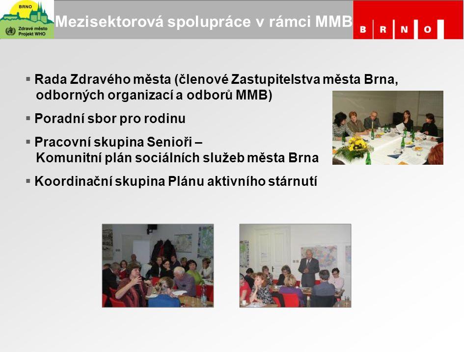 Mezisektorová spolupráce v rámci MMB