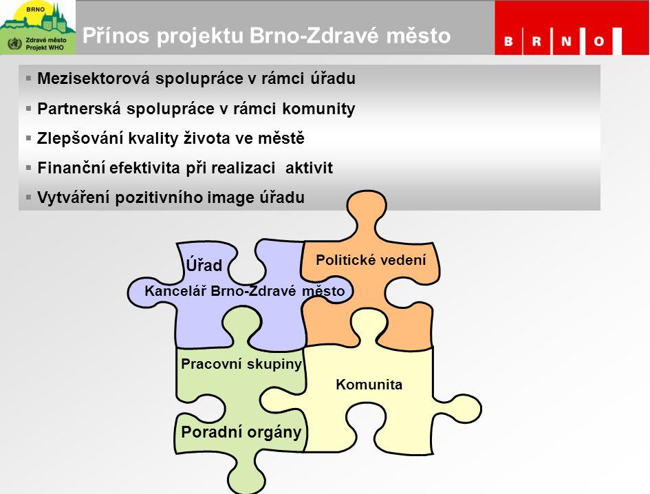 Přínos projektu Brno-Zdravé město