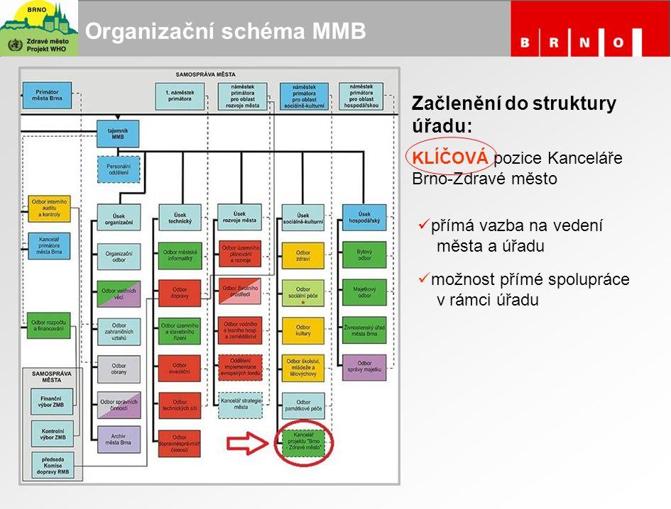 Organizační schéma MMB