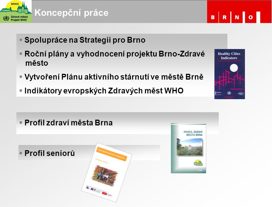 Koncepční práce Spolupráce na Strategii pro Brno