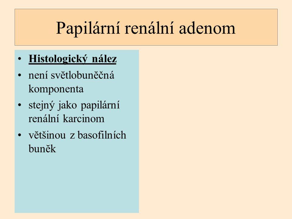Papilární renální adenom