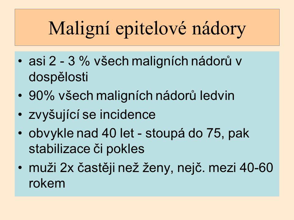 Maligní epitelové nádory