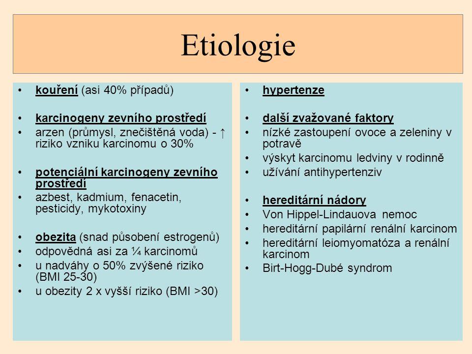 Etiologie kouření (asi 40% případů) karcinogeny zevního prostředí
