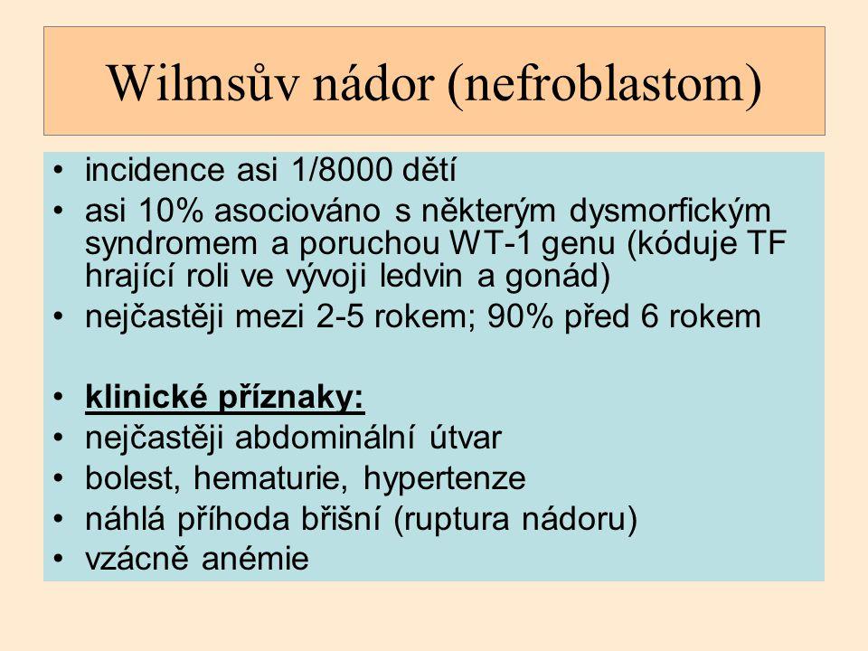 Wilmsův nádor (nefroblastom)