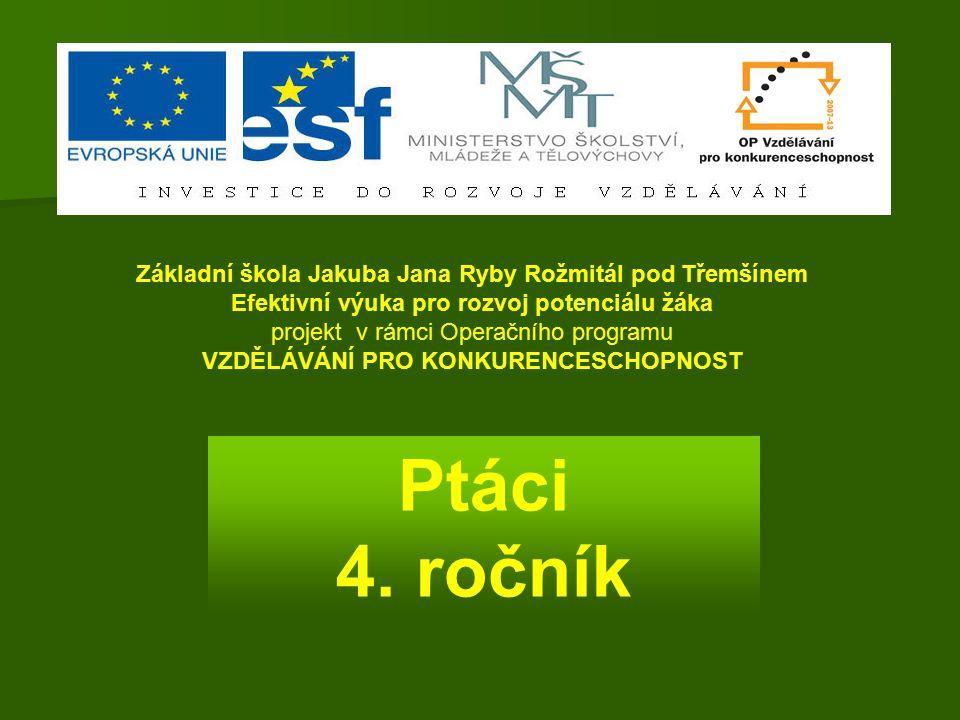 Ptáci 4. ročník Základní škola Jakuba Jana Ryby Rožmitál pod Třemšínem