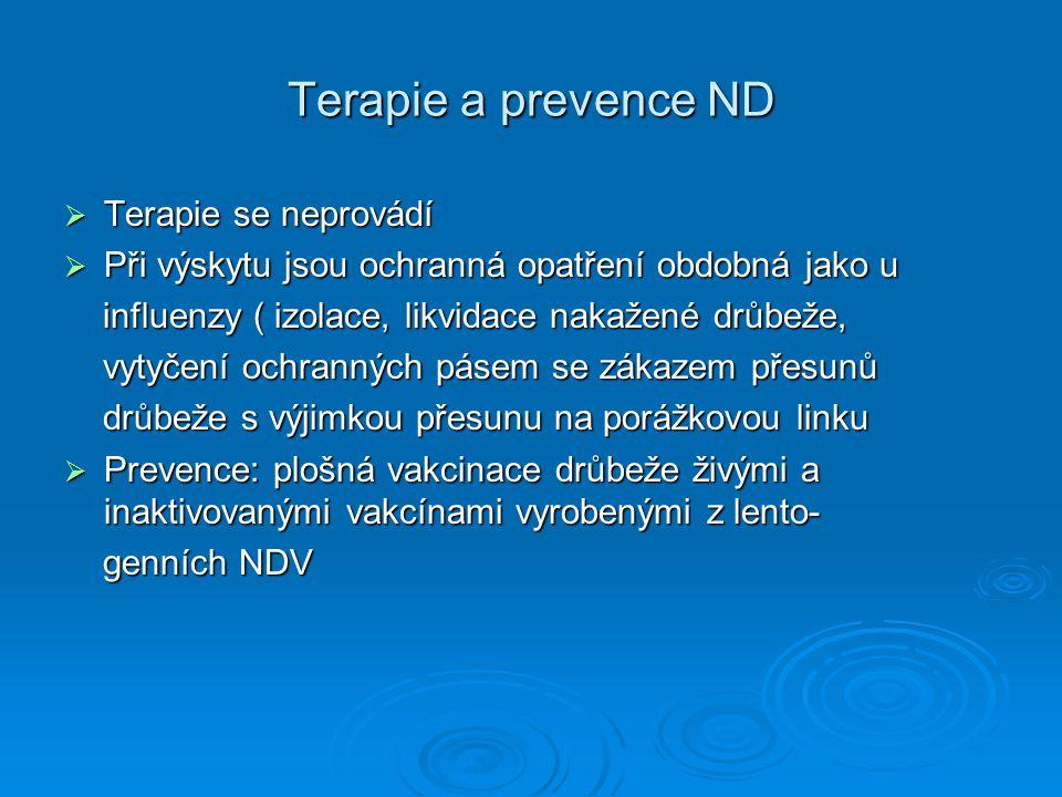 Terapie a prevence ND Terapie se neprovádí
