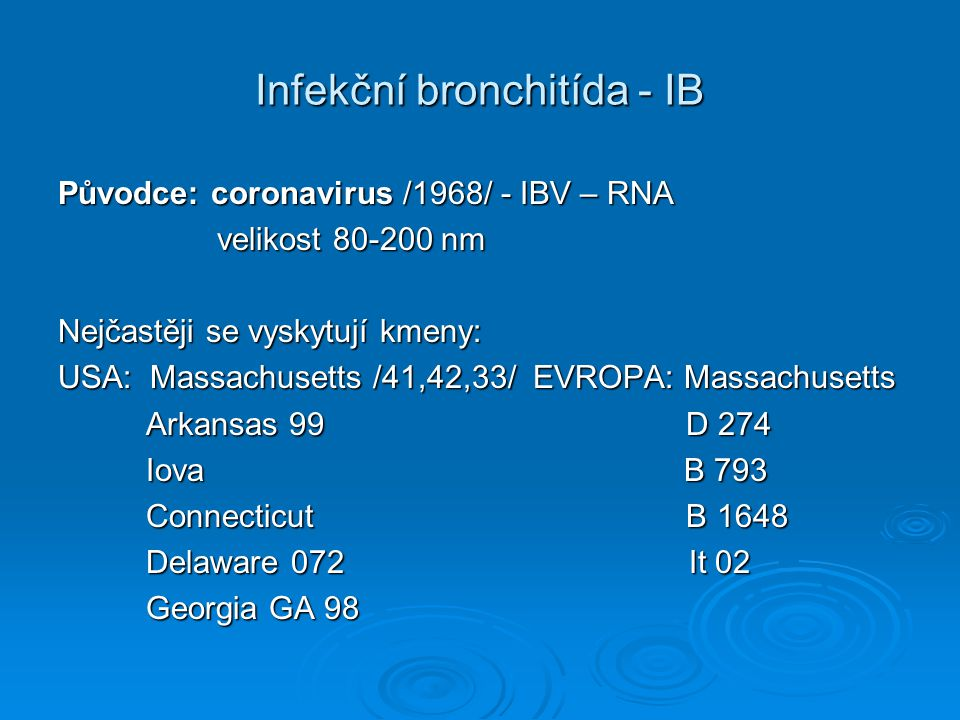 Infekční bronchitída - IB