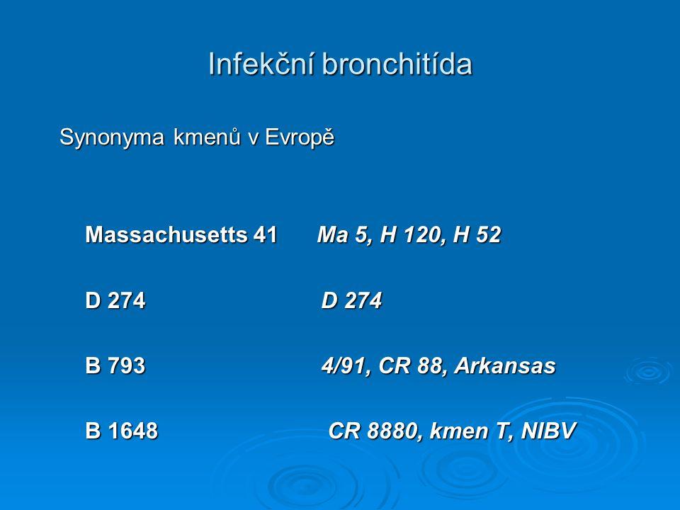 Infekční bronchitída Synonyma kmenů v Evropě