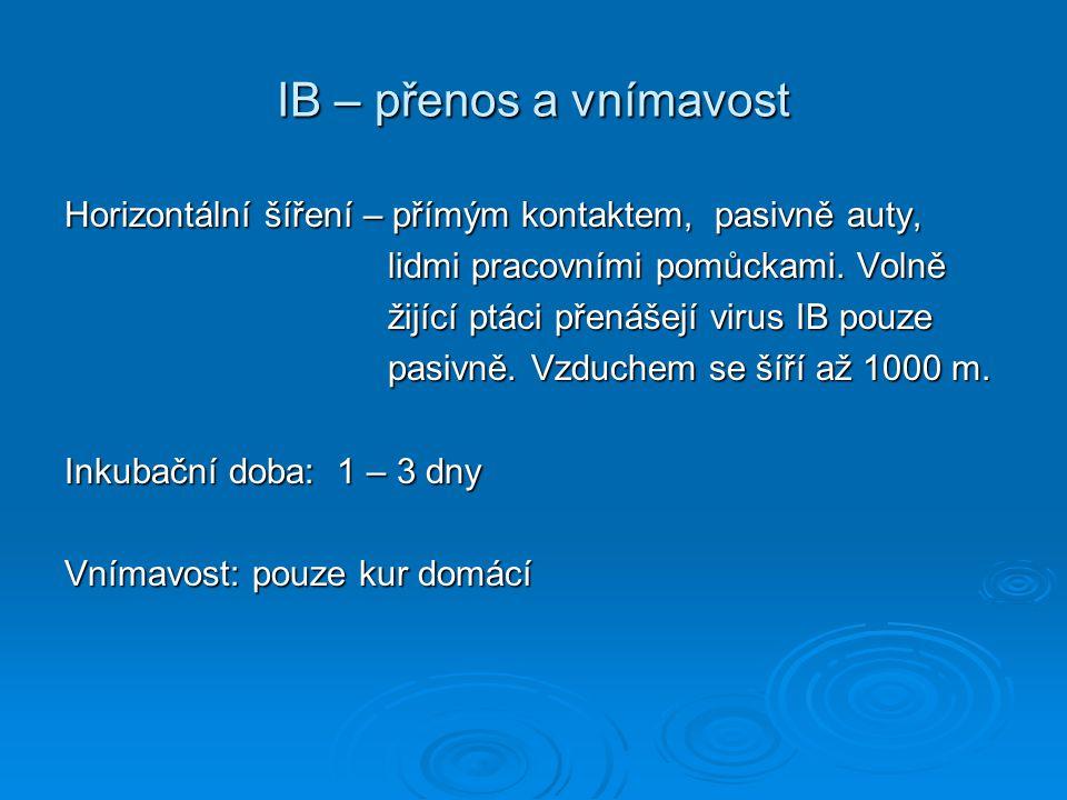 IB – přenos a vnímavost Horizontální šíření – přímým kontaktem, pasivně auty, lidmi pracovními pomůckami. Volně.