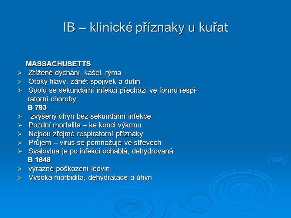 IB – klinické příznaky u kuřat