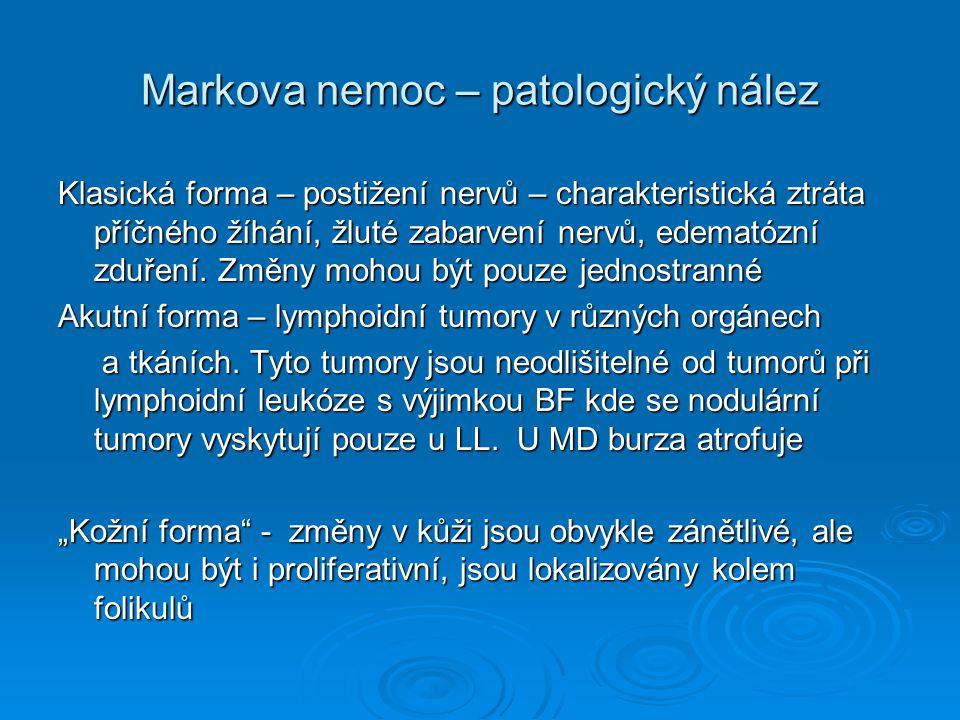 Markova nemoc – patologický nález