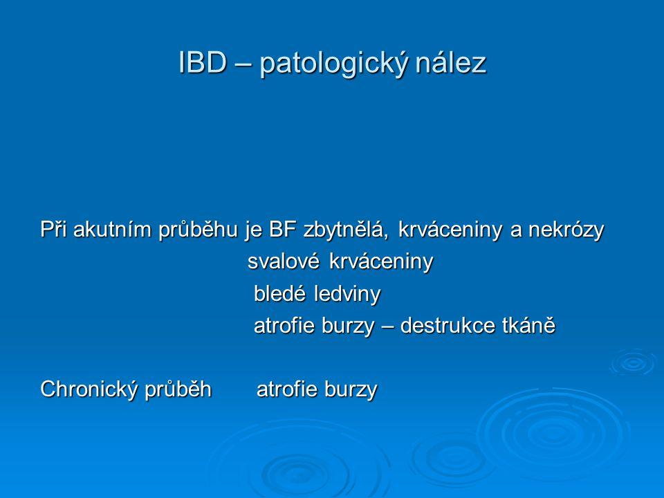 IBD – patologický nález