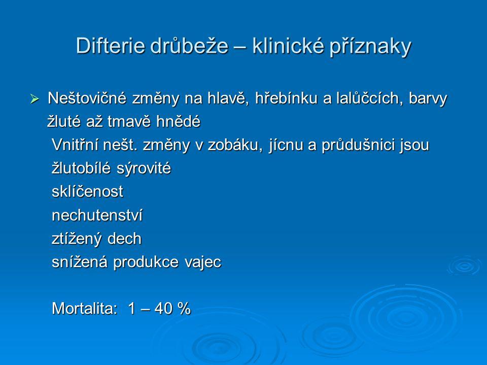 Difterie drůbeže – klinické příznaky