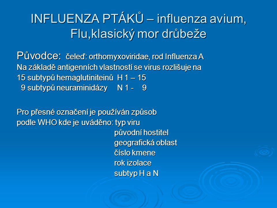 INFLUENZA PTÁKŮ – influenza avium, Flu,klasický mor drůbeže