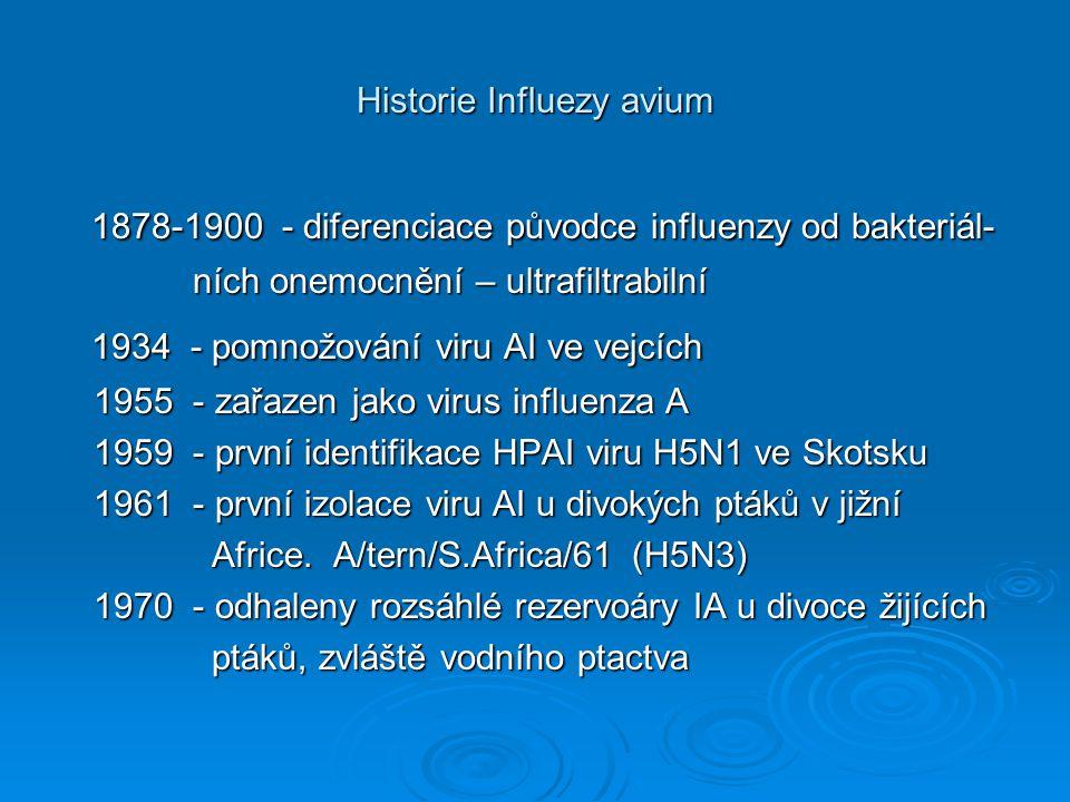 Historie Influezy avium
